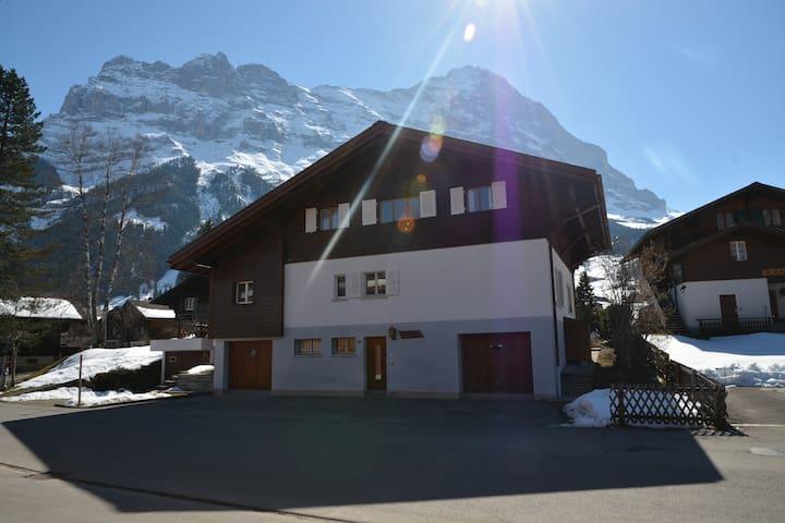 Chalet Delphin - Grindelwald - Haus