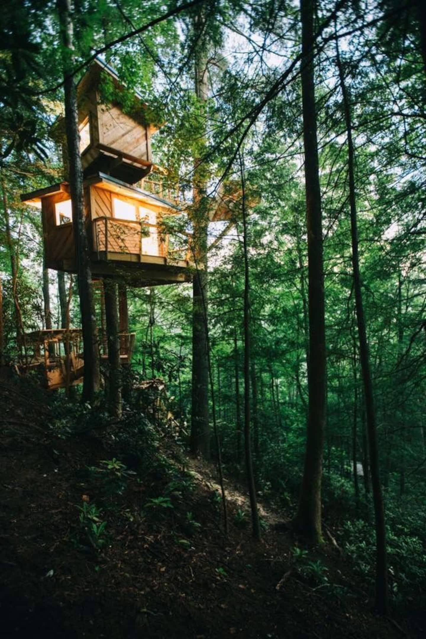 Wow! We found the Best Kentucky treehouse Rentals. Save time searching!