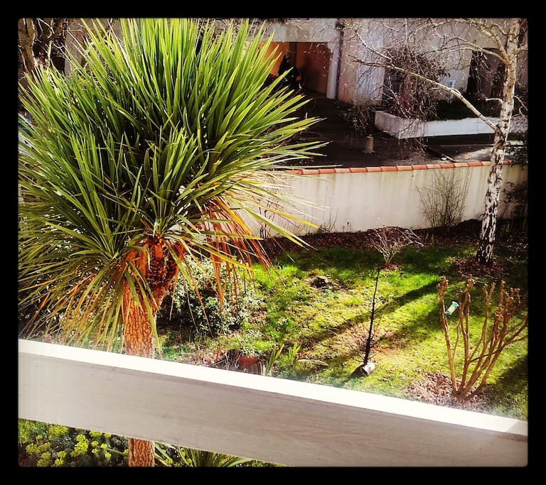 Vue du jardin (en hiver) de 300 m2