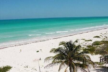La mejor playa virgen en Yucatán - El Cuyo