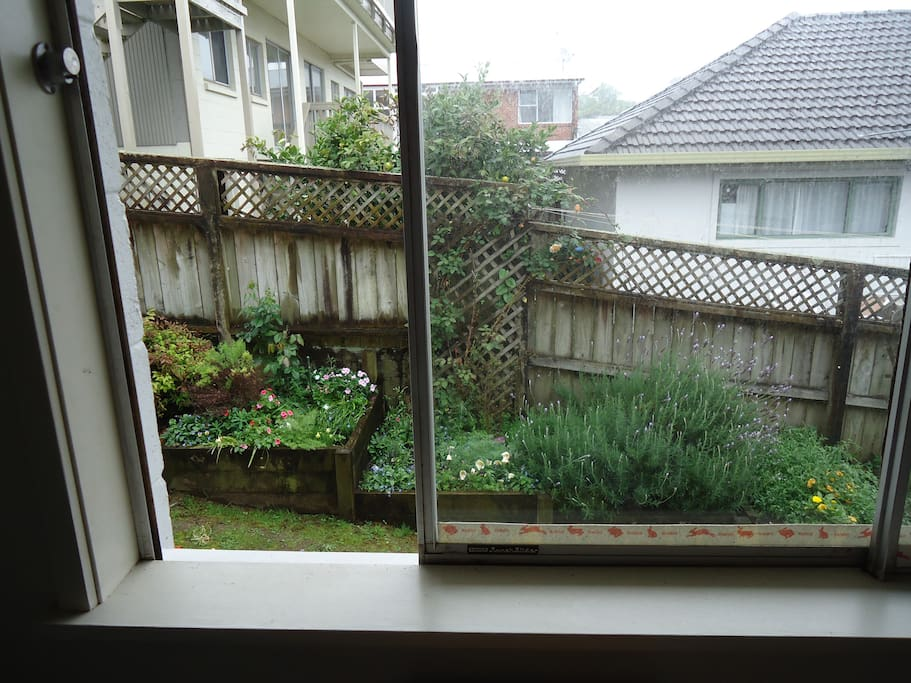 Garden outlook from the Room.