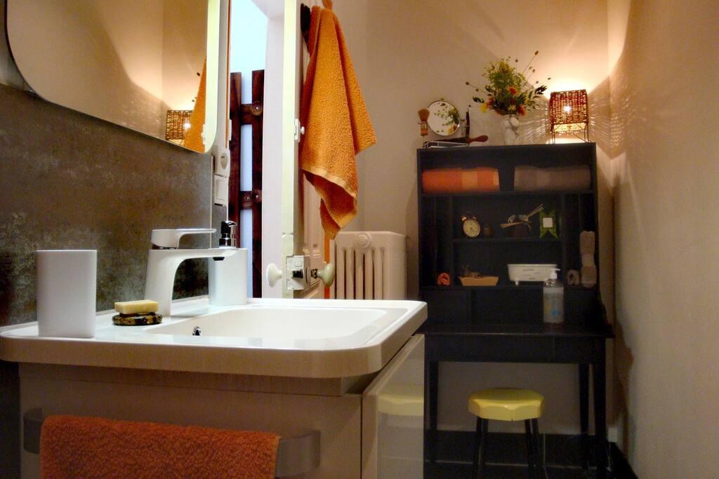 Salle de douche avec toilettes
