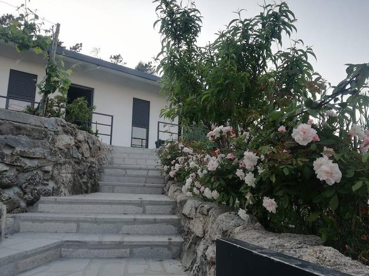 Moradia T1 - Pico de Regalados