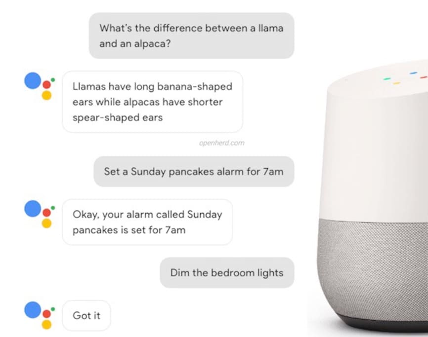 OK GOOGLE- where's the nearest pharmacy? Google Home assistant to help you on your stay