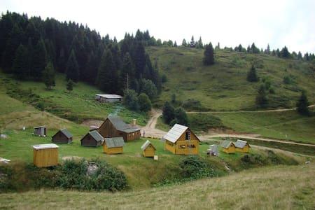 Eco village Kolibe Damjanovica - Bungalow