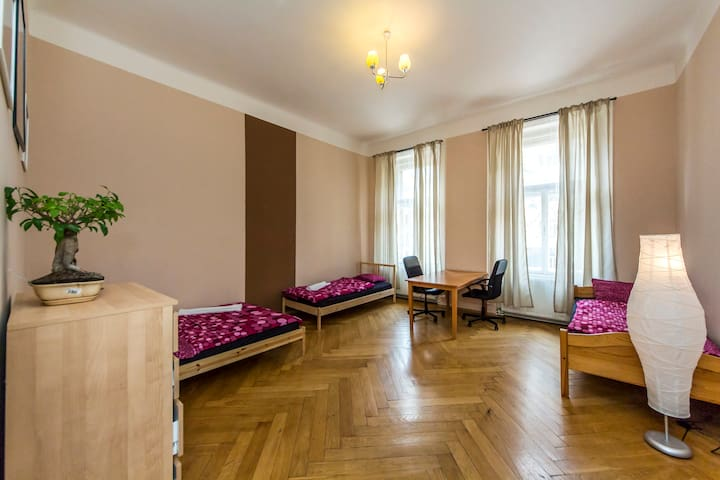 Central, beautiful historical apartment for 12 ppl - Prague - Apartment