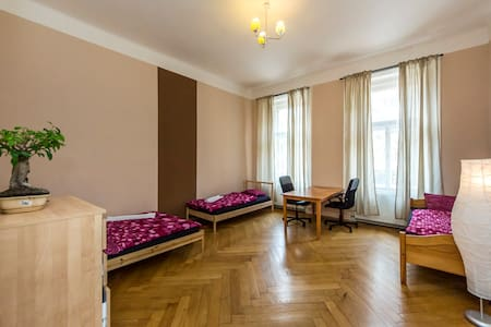 Beautiful, historical huge flat, centre, 11 people - Prague - Apartment
