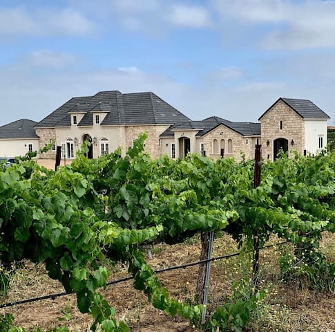 BRAND NEW! VINEYARD WINE COUNTRY ESTATE! Suite #2