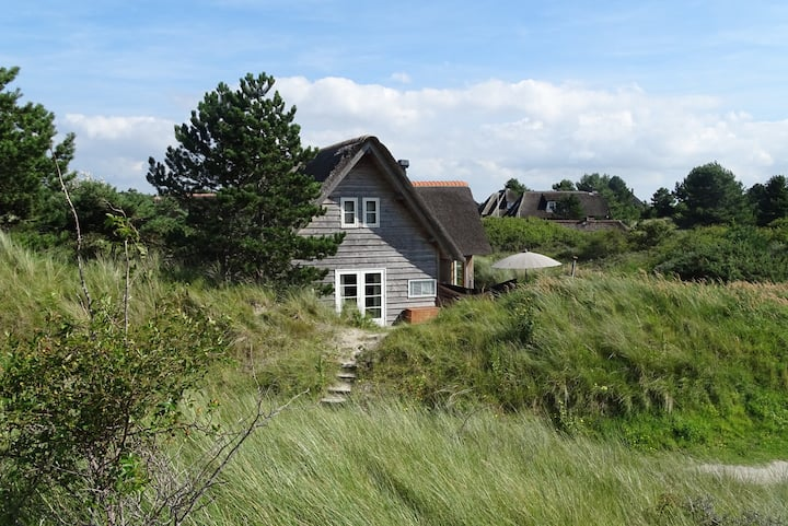 Fantastic summerhouse in the dunes