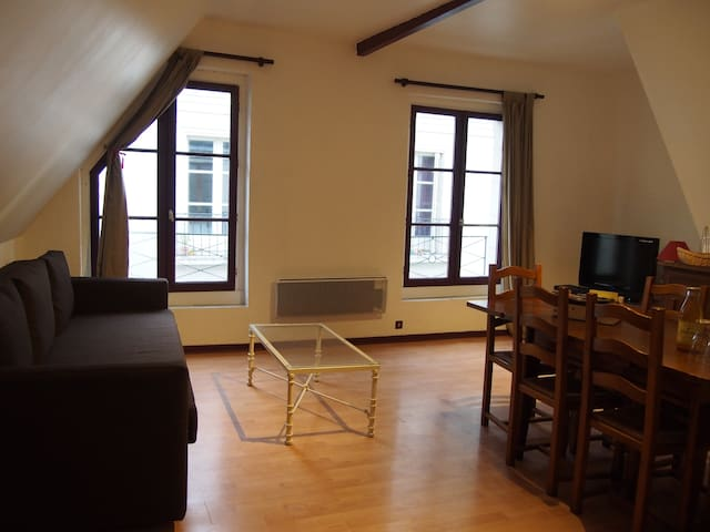 Apartment of 85 m² City Heart in TOURS