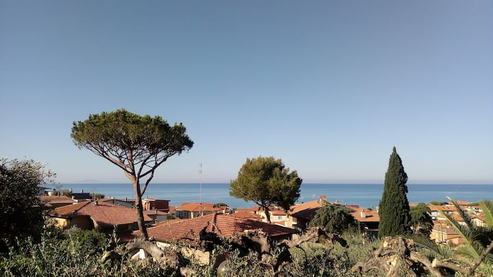 Olive tree house with sea view!