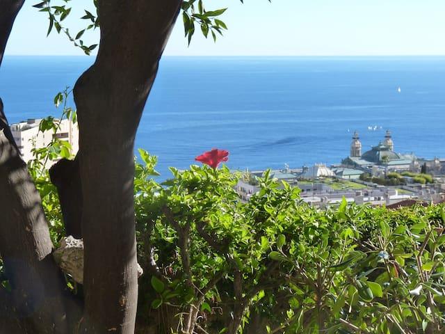 Un paradis à 200m de Monaco - Beausoleil - House