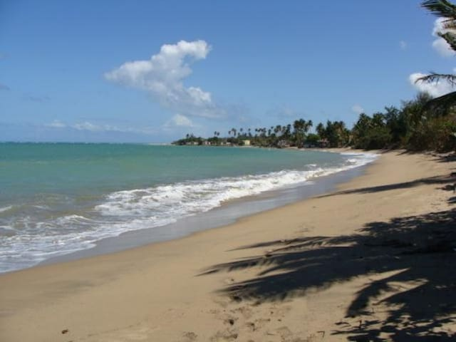 Beach front relaxing Villa *Great family vacations - Loíza - Apartamento