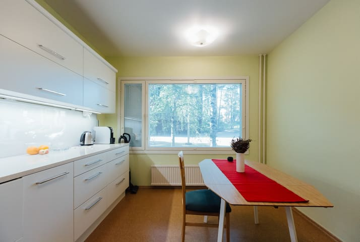 Park &Sea View Apartment in Kotka Centre - Kotka - Daire