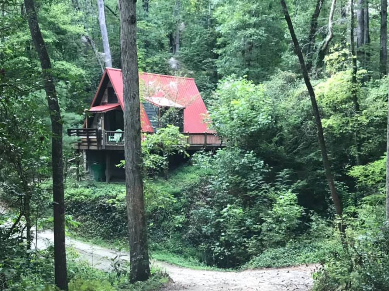 Nestled in the woods yet close to town!