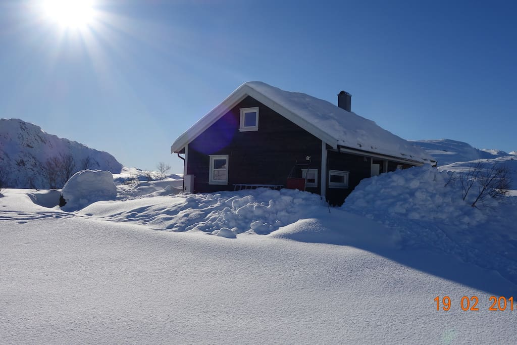 Fjellsoli February 2018