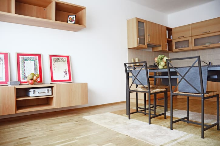 Amazing apartment near Prague Castle - Praga