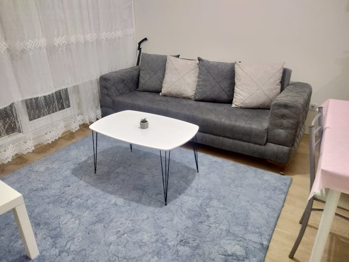 Near Airport/Lovely Cozy Apartment
