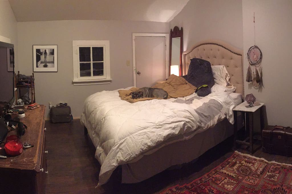 guest room (dog not included ;))