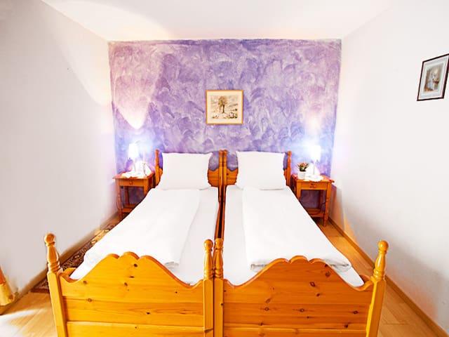 Bogensporthotel Bad, (Eisenbach), Einzelzimmer mit Dusche/WC