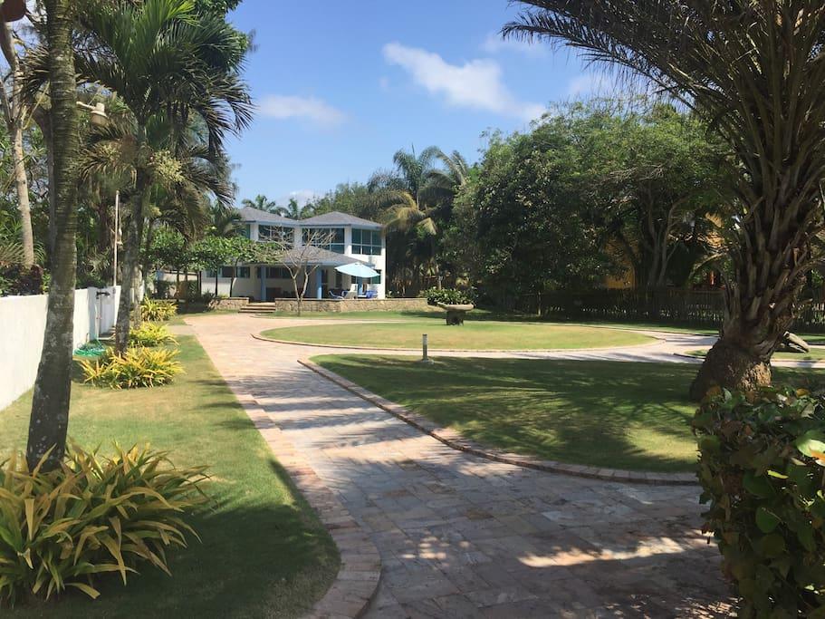 Front yard - Ocean view