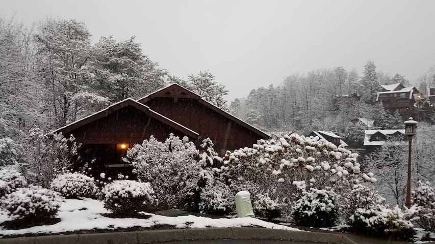 Next to Dollywood/rustic modern cottage/hot-tub