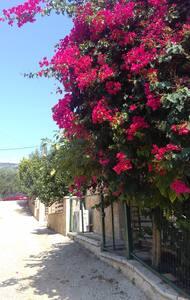Casa matina - Sivota