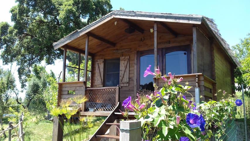 Casa Do Sobreiro 2 Voyage, détente, nature.