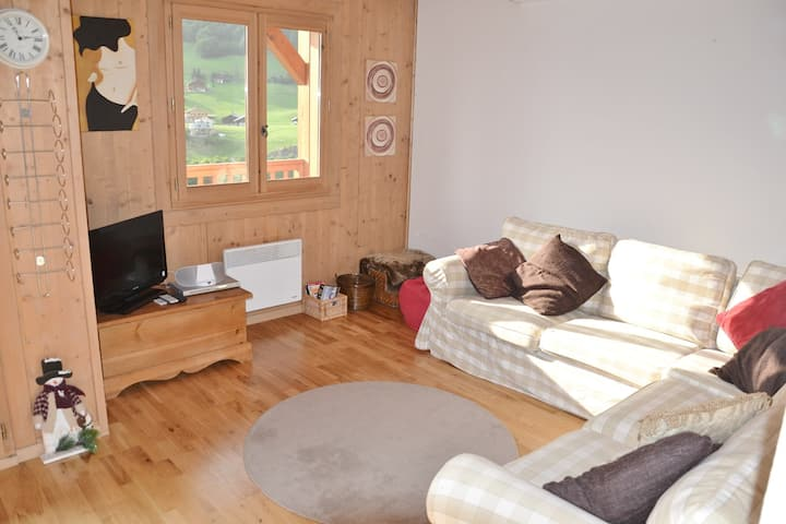 Lovely 3 bed apt for 6 with wifi, garage close to the slopes!