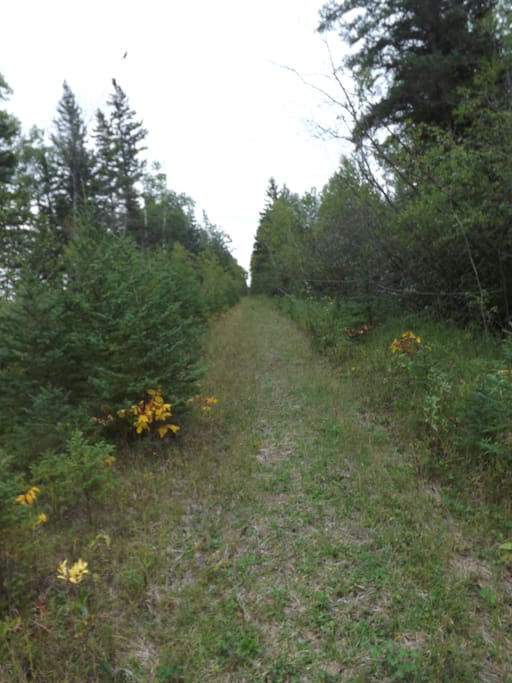 1 mile of hiking trails on property- several other hiking trails nearby