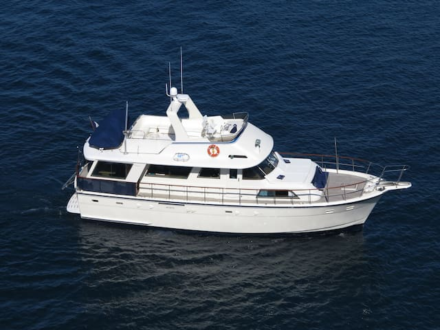 Yacht 56' for dockside or sea cruise - Vallauris - Boot