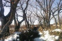 Veredas para caminar y disfrutar de la Naturaleza desde el Pajar