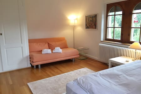 BnB zum Roseneck: Room Hulk - Basel - Bed & Breakfast