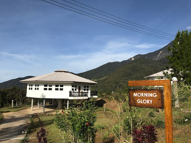 Mesilau Mountain Retreats - Morning Glory Lodge