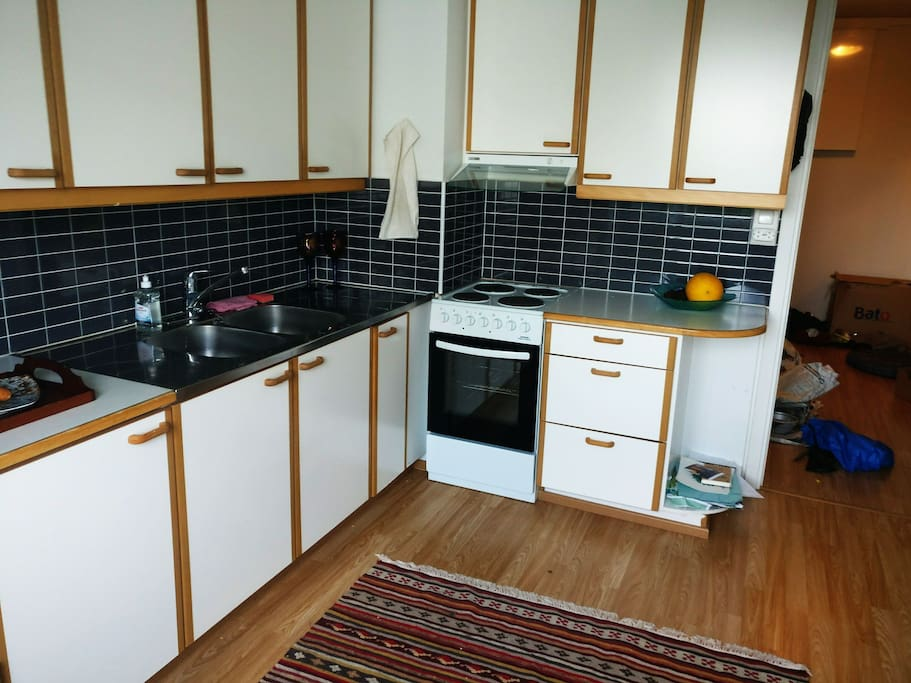 Large kitchen with tableware and coocking facilities. No dining table yet.
