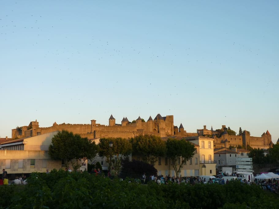La cité de Carcassonne /Carcassonne city