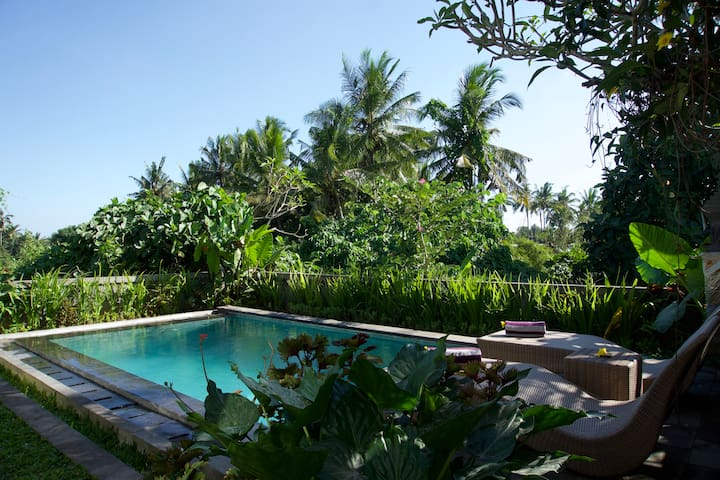 Private house with private pool for Ubud holiday