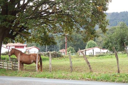Au cœur du Pays Basque