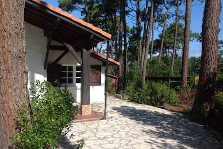 Samara B&B - Lège-Cap-Ferret