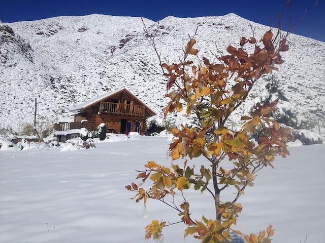 La Araucaria- Cabaña Andina - Potrerillos - Srub