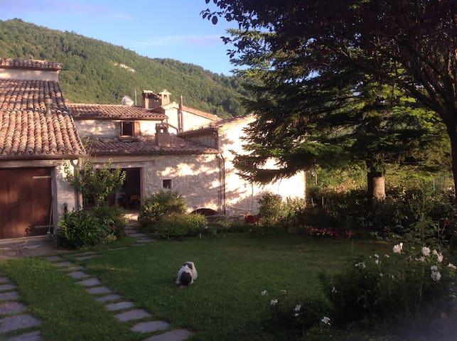 BB di charme in Montefeltro - Pennabilli - Wikt i opierunek