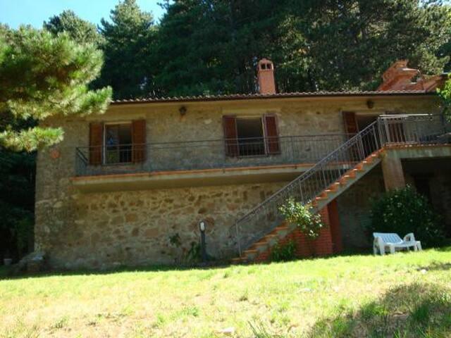 """Podere """"Il Diaccio"""" - Roccastrada - Dom"""