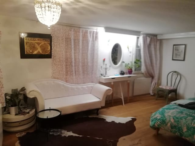 2 ROOMS apartmen,CENTRAL city,2-8persons
