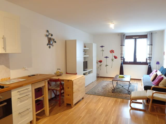 T2 tout confort centre de DAX - Dax - Apartment
