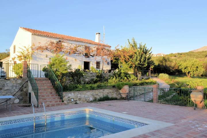 Authentic farmhouse with private swimming pool situated among olive trees