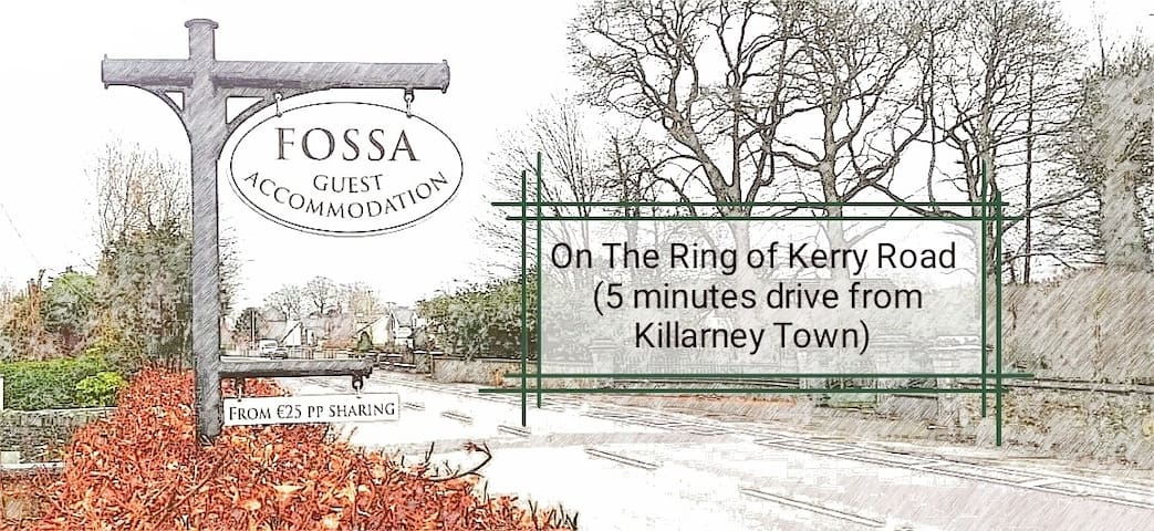 Fossa Guest Accommodation,Killarney, Ring of Kerry