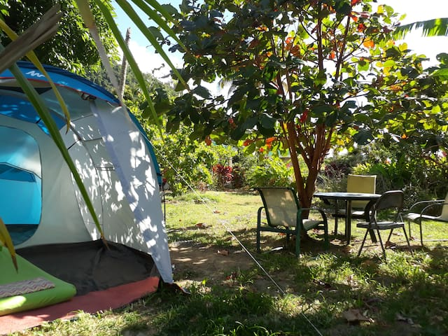"Big Banana Campground "" Cherry"""