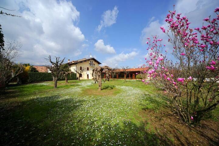 QUEEN(15 minuti dal Lago di Garda)