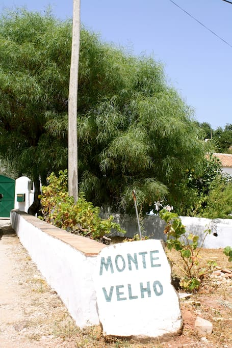 """Monte Velho"" - The old farm house ... you can park your car at the gate under the shelter of the tree"