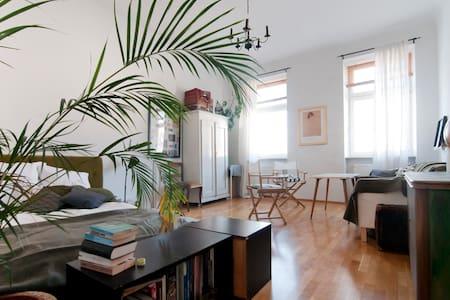 Cozy room close to City Center - Vienna